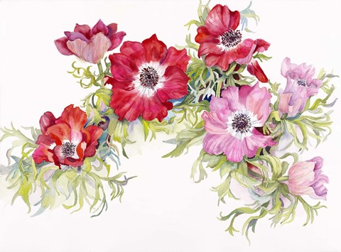 Framed Red Anemonies Print