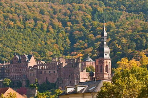 Framed Heidelberg's Old Town, Germany Print