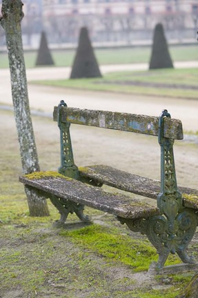 Framed Park Bench in the Gardens, Chateau de Fontainebleau Print
