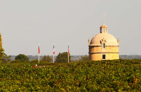 Framed Tower and Flags of Chateau Latour Vineyard Print
