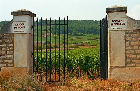 Framed Iron Gate to the Vineyard Clos Pitois Print