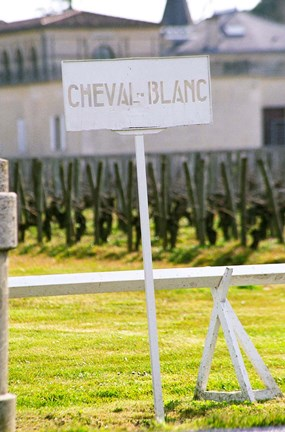 Framed Vineyard and Chateau Cheval Blanc Print