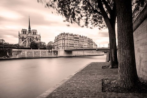 Framed River Seine and Cathedral Notre Dame Print