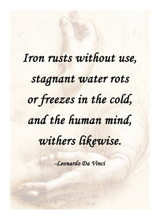 Framed Iron Rusts Without Use -Da Vinci Quote Print