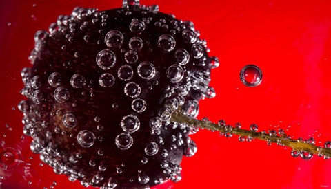 Framed Cherry Covered In Water Drops V Print