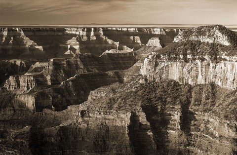 Framed Sepia Grand Canyon 1 Print