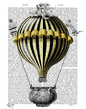 Framed Baroque Fantasy Balloon 2 Print