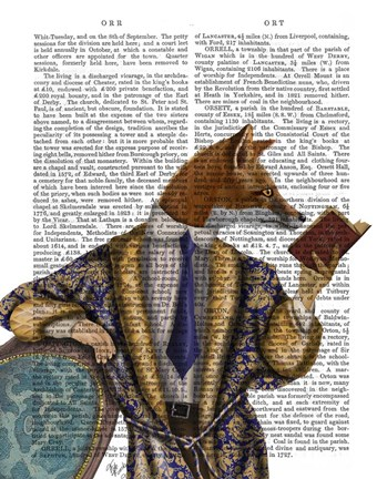 Framed Book Reader Fox Print