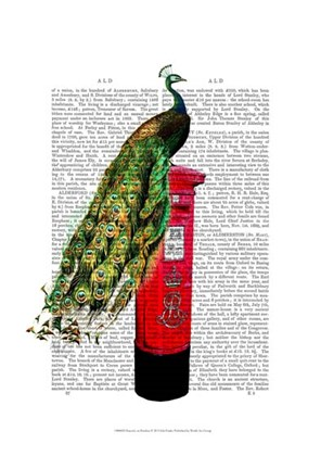 Framed Peacock on Postbox Print