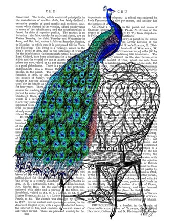 Framed Peacock on Chair Print