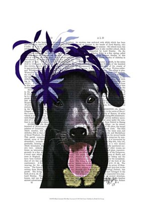 Framed Black Labrador With Blue Fascinator Print