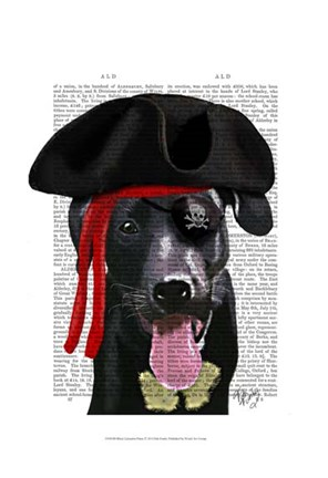 Framed Black Labrador Pirate Print