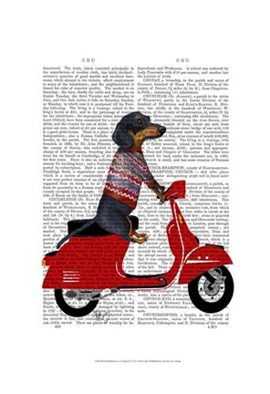 Framed Dachshund on a Moped Print