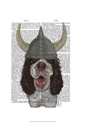 Framed Springer Spaniel Viking Print