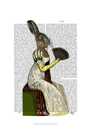 Framed Miss Hare Print