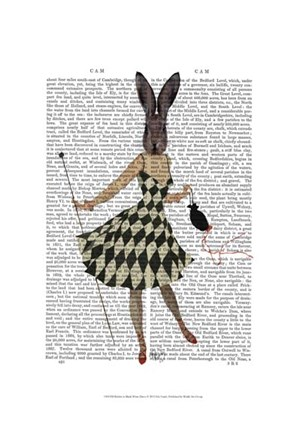 Framed Rabbit in Black White Dress Print