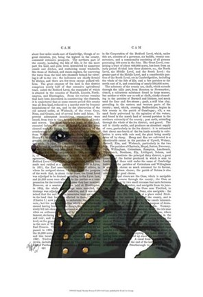 Framed Dandy Meerkat Portrait Print