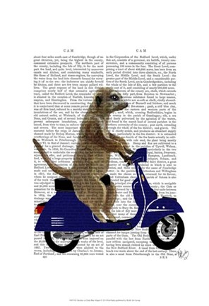 Framed Meerkat on Dark Blue Moped Print