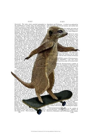 Framed Meerkat On Skateboard Print