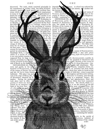 Framed Jackalope with Grey Antlers Print