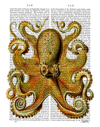 Framed Vintage Yellow Octopus Front Print