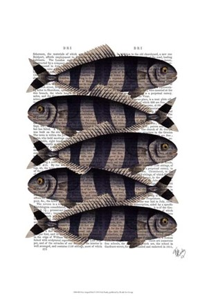 Framed Five Striped Fish Print
