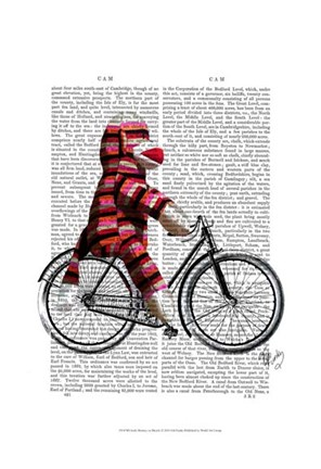 Framed Sock Monkey on Bicycle Print