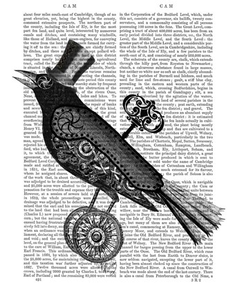Framed Steampunk Crow Print
