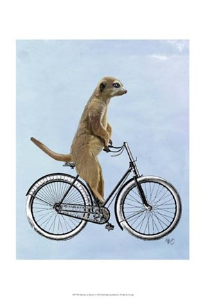 Framed Meerkat on Bicycle Print