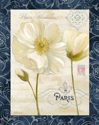 Framed Paris Poppies w/Navy Border II Print