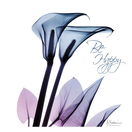 Framed Calla Lily Purp I Print