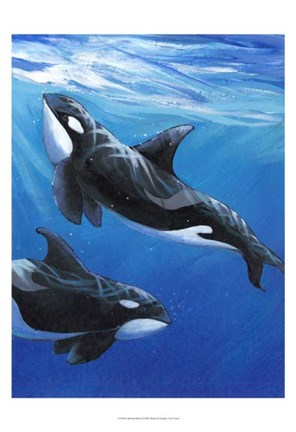 Framed Under Sea Whales II Print