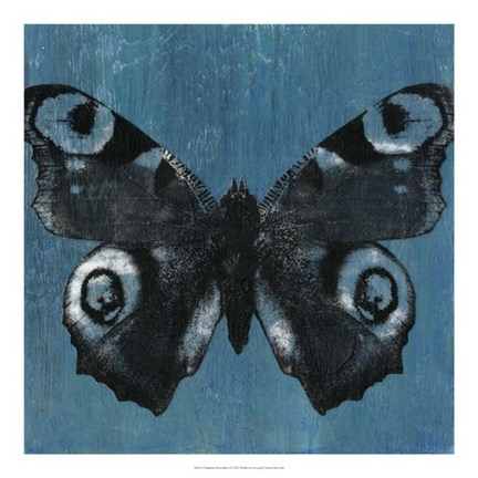 Framed Chambray Butterflies I Print