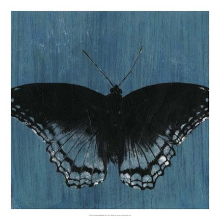 Framed Chambray Butterflies II Print