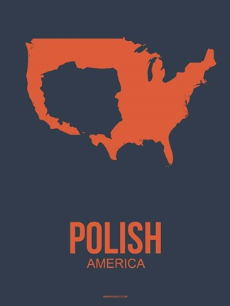 Framed Polish America 2 Print