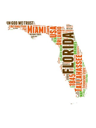Framed Florida Word Cloud Map Print