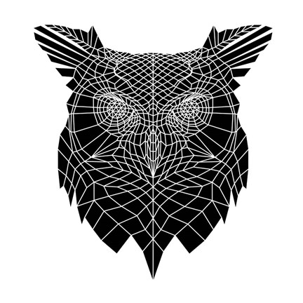 Framed Black Owl Head Mesh Print