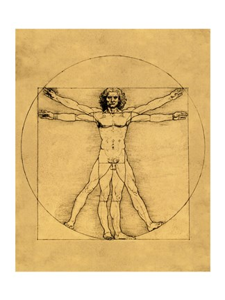 Framed Proportions of the Human Figure - Vitruvian Man Print
