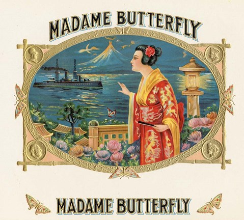 Framed Madame Butterfly Print