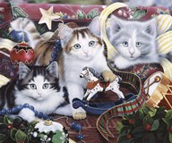 Christmas Kittens And All The Trim'Ns  Fine Art Print