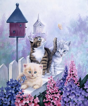 Framed Cats In Front Of The Birdfeeder Print