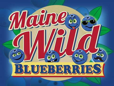 Framed Maine Wild Blueberries Print