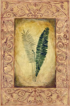 Framed Decorative Ferns II Print