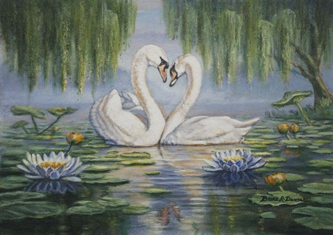 Swan Love Fine Art Print By Bruce Dumas At Fulcrumgallery Com