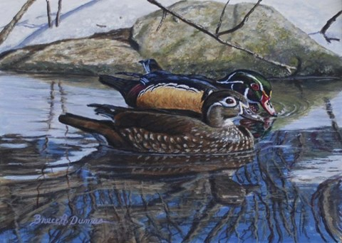 Framed Spring Thaw Woodies Print
