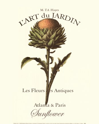 Framed L'art Due Jardin I Print