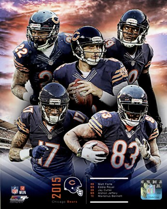 Framed Chicago Bears 2015 Team Composite Print