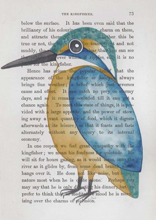 Framed Kingfisher Print