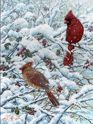 Framed Winter Cardinal Painting Print