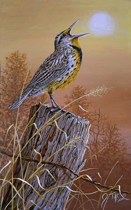 Framed Meadowlark Painting Print